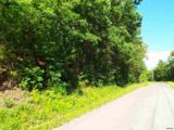 Greasy Cove Road - Photo 12
