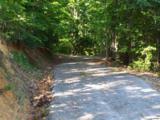 Greasy Cove Road - Photo 2