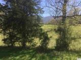 Lot 2-b,2-c,2-d Hatcher Mountain Way - Photo 13
