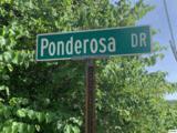 Ponderosa Drive - Photo 9