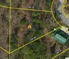 Lot 76 Bluff Ridge Road - Photo 9
