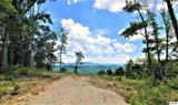 Lot 193 Smoky Bluff Trail - Photo 1