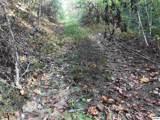 2410 Spence Mountain Loop - Photo 16
