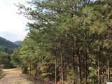 2410 Spence Mountain Loop - Photo 17