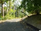 920 Pine Cone Way - Photo 4