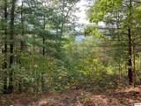 1732 Tall Pines Way - Photo 3