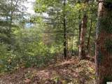 1732 Tall Pines Way - Photo 4