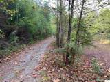 1732 Tall Pines Way - Photo 5