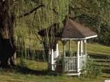 1135 Vista Drive - Photo 4