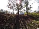 1830 Chapman Highway - Photo 9