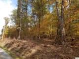 Tract 2 Auburn Ln - Photo 4