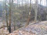 2.59 Acre Tract Lones Branch Lane - Photo 1