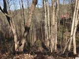 Lot 0543 Silver Poplar Lane - Photo 1