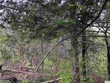 Lot 6 River Birch Way - Photo 2