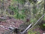 Lot 6 River Birch Way - Photo 3