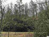 Lot 3 Butler Branch Road - Photo 1