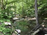 Lot 4 Clear Fork Rd. - Photo 1