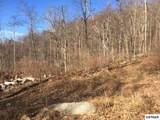 36 Acres Round Mtn/Boomer Den Rd - Photo 4