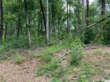 Lot 26 Deer Path Ln - Photo 1