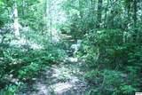 Bogard Creek Way - Photo 15