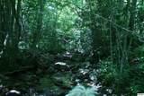 Bogard Creek Way - Photo 17