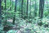 Bogard Creek Way - Photo 21