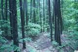 Bogard Creek Way - Photo 22