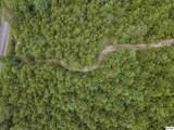 4.3 Acres Sharp Road - Photo 10