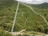 4.3 Acres Sharp Road - Photo 4