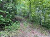 Joyner Hills Ln - Photo 7