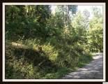 Lot Lonesome Pine Way - Photo 6