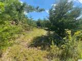 Lot 60 Mountain Ash Way - Photo 14