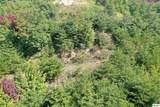 Lot 60 Mountain Ash Way - Photo 3