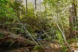 1ac Bogard Creek Way - Photo 18