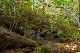 1ac Bogard Creek Way - Photo 19