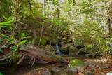 1ac Bogard Creek Way - Photo 2