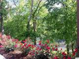 212 Dollywood Ln # 116 - Photo 5