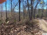 4 lots Cunningham Rd - Photo 6