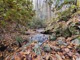 Mill Creek Rd - Photo 16