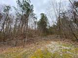 4841 Old Walland Hwy - Photo 53