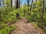 lot #1-A Shular Hollow Way - Photo 1