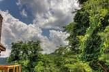 3132 Hatcher Top Rd - Photo 30