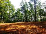 15.39 Acres Newcombe Branch  Way - Photo 1