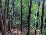 LT 38 Sunshine Trail - Photo 3