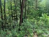 LT 38 Sunshine Trail - Photo 5