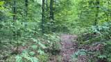 Lot 25 Fox Hunters Lane - Photo 7