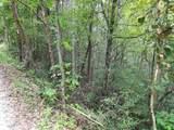 Rich Mountain Way - Photo 1