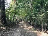 28 Acres County Line Road - Photo 10
