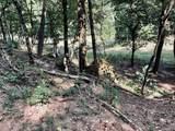 28 Acres County Line Road - Photo 5