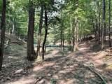 28 Acres County Line Road - Photo 8